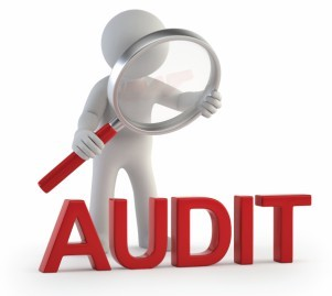 Will your Business be Audited?